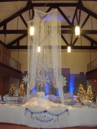 Holiday - Crystal Curtain and Star - Catering Display