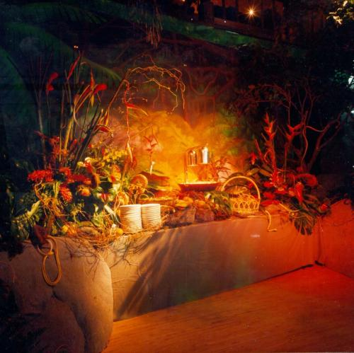 Jungle Theme Catering Station