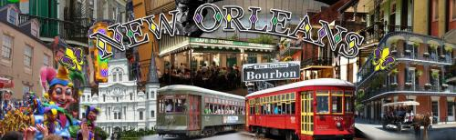 New Orleans - Mardi Gras Theme - Collage Design - Digital Print Backdrop - 8' tall x 26' wide