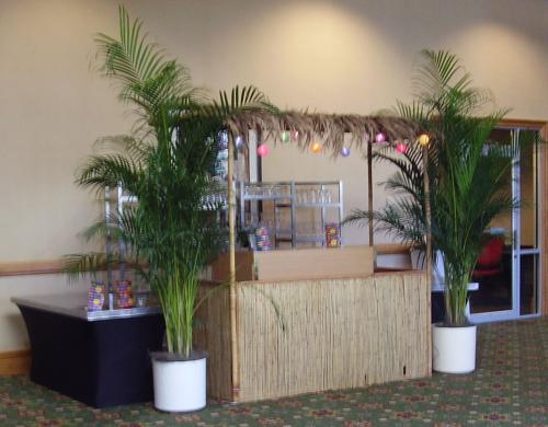 Tropical - Tiki Hut - Bar Station